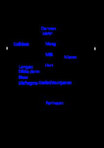 TCM gezichtsdiagnostiek